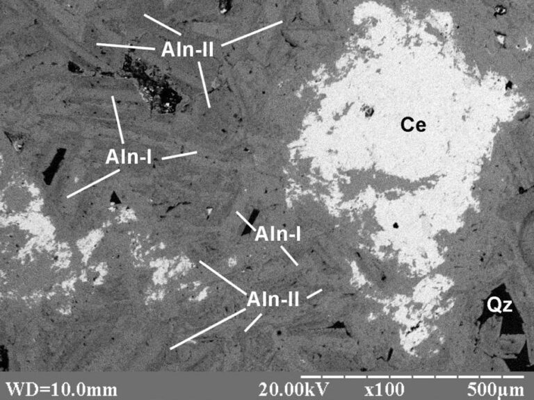 The electronic image of allanite ore in polished thin section A-6